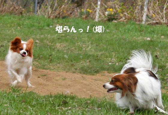 amikota090521-1.jpg