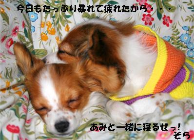 amisora080109-3.jpg