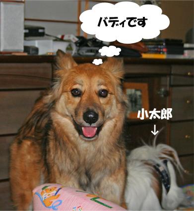bady090323-1.jpg