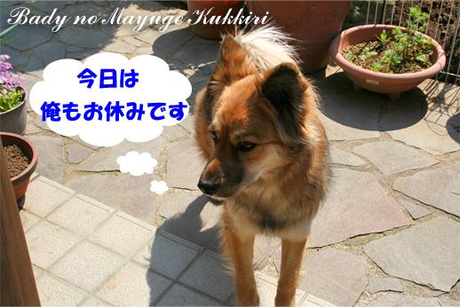 bady090325-1.jpg