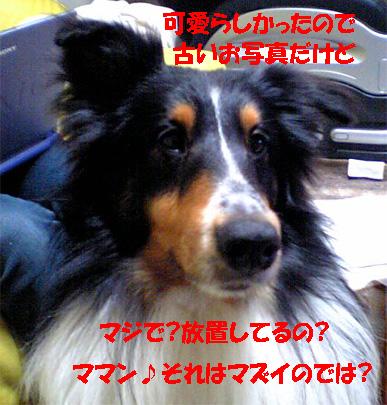 bura061117-2.jpg