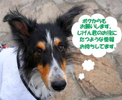 bura061207-2.jpg