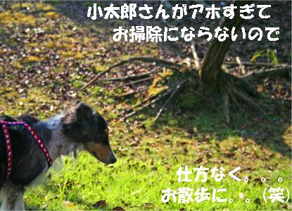 bura061218-1.jpg