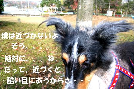 bura061218-2.jpg
