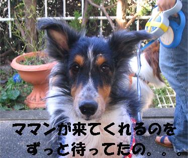bura070110-2.jpg
