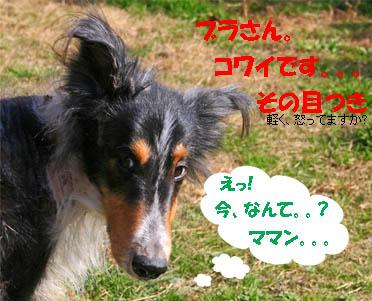 bura070125-2.jpg