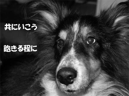 bura070227-2.jpg