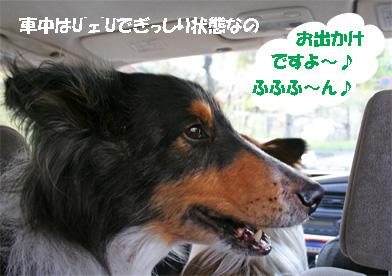 bura070409-1.jpg