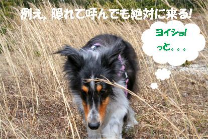 bura070418-4.jpg