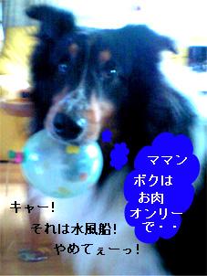 bura070604-1.jpg