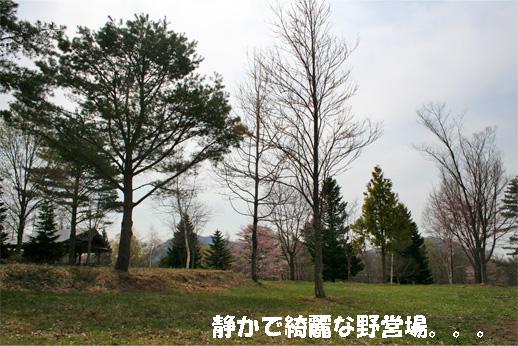 camp1_20090507110801.jpg