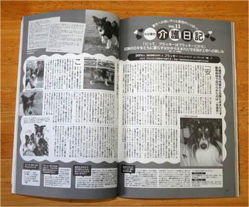 dogfan1.jpg