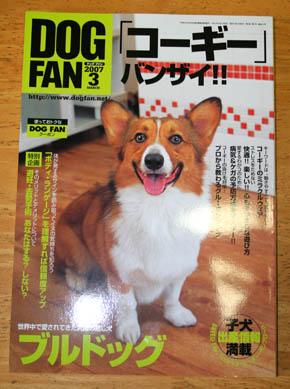 dogfan2.jpg