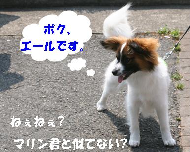 e-ru.jpg