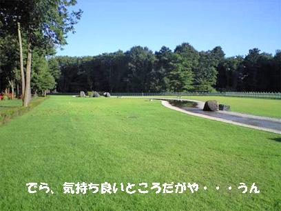 f716.jpg