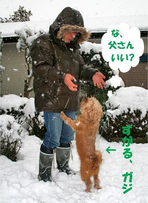 gaji080212-6.jpg