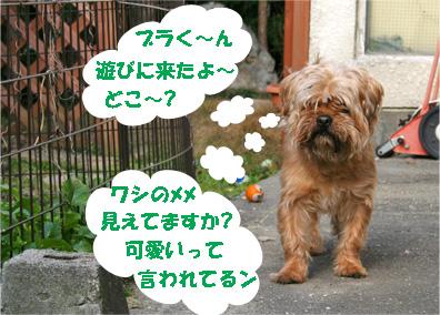 gajirou080207-2.jpg