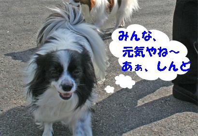 haruchan071024-1.jpg