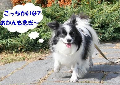haruchan081102-4.jpg