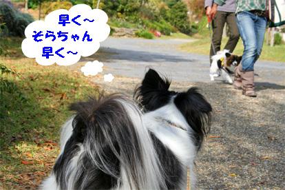 haruchan081102-5.jpg