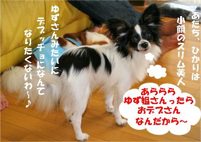 hikari070918-3.jpg