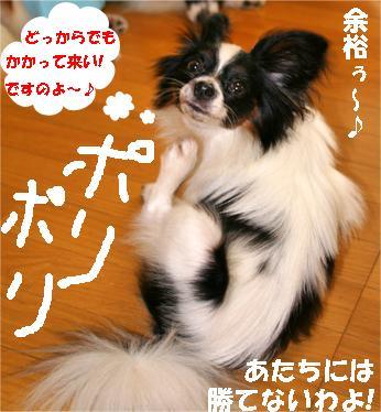 hikari070918-4.jpg