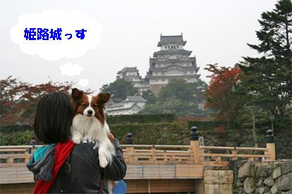 himejijyou081103-1.jpg