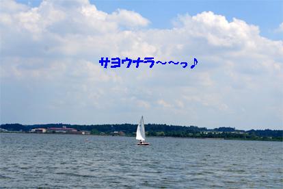 hinuma2.jpg