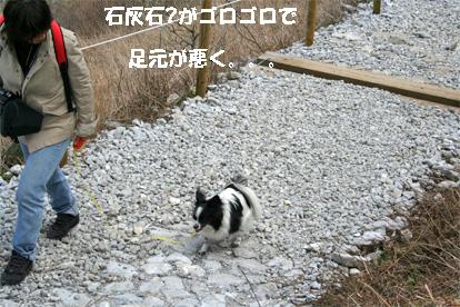 ibukiyama080429-2.jpg