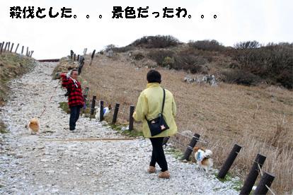 ibukiyama080429-3.jpg