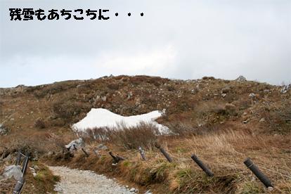 ibukiyama080429-4.jpg