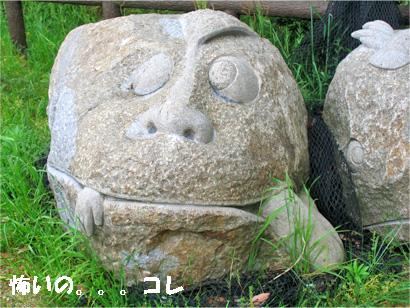 kagawa5.jpg