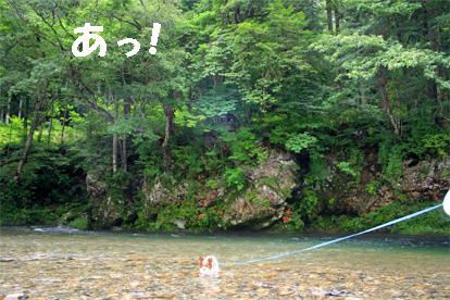 kiyomi070727-12.jpg