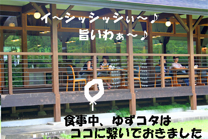 kiyomi070727-8.jpg