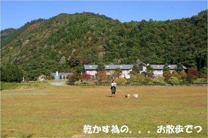 kiyomi081019-3.jpg