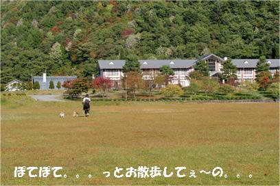 kiyomi081019-4.jpg