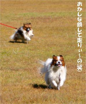 kiyomi081019-5.jpg
