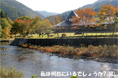 kiyomi081019-6.jpg