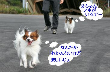 kota071023-1.jpg