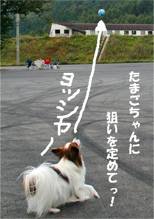 kota071023-3.jpg
