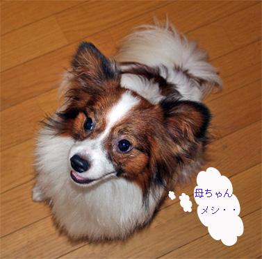 kotaro060914-1.jpg