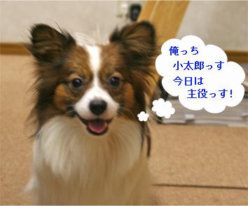 kotaro061011-1.jpg