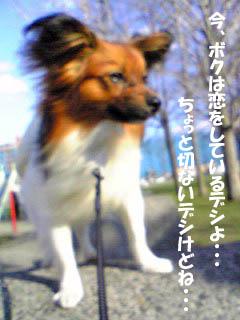 kotaroukun3.jpg