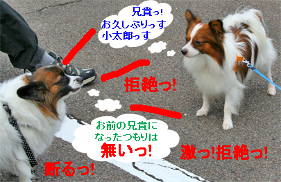 kotasora071022-1.jpg