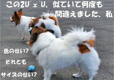kotasora071024-1.jpg