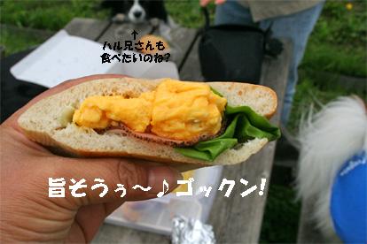 lunch080501-3.jpg