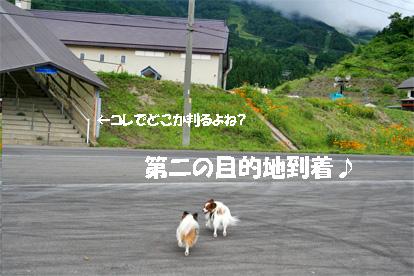 meihou070725-1.jpg