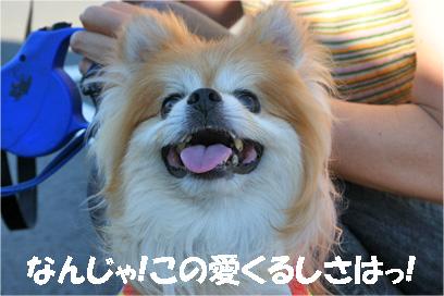 monchan080819-2.jpg