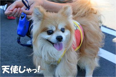 monchan080819-3.jpg