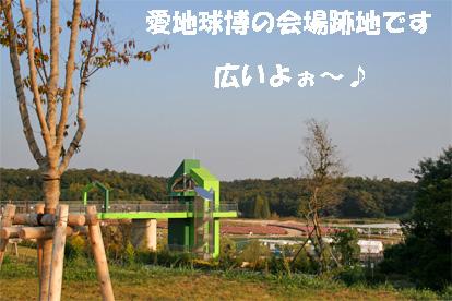 morikoro081018-2.jpg